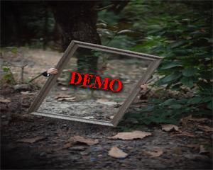 cài đặt giao diện giống demo