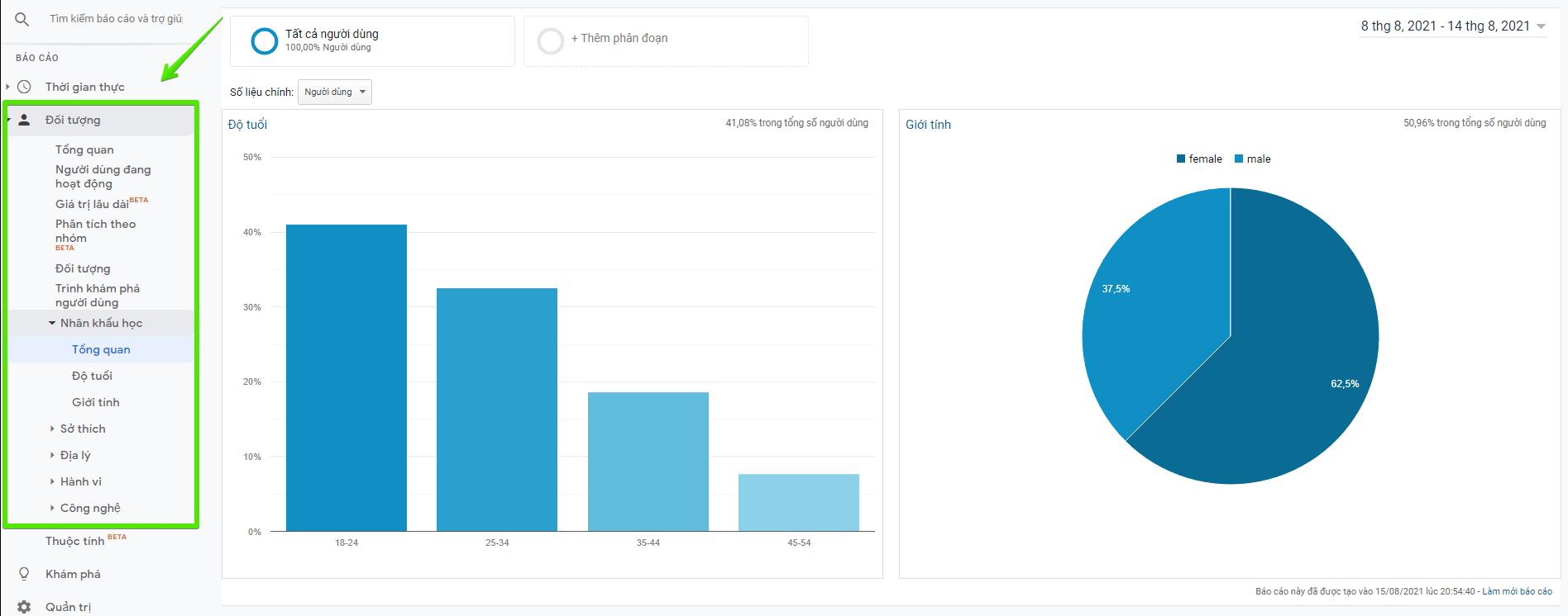 nhân khẩu học từ google analytics